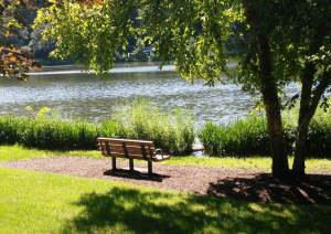 """My"" bench at Lake Ellyn Park"